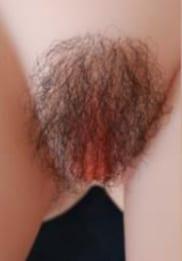 Pubic Hair 4